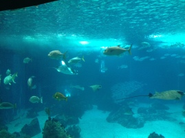 The big tank in the center