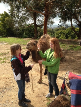 Lulu & Momo with baby camel