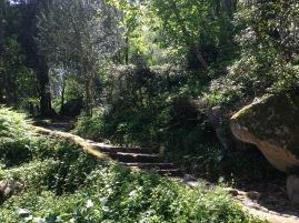 Hike up to Moorish Castle
